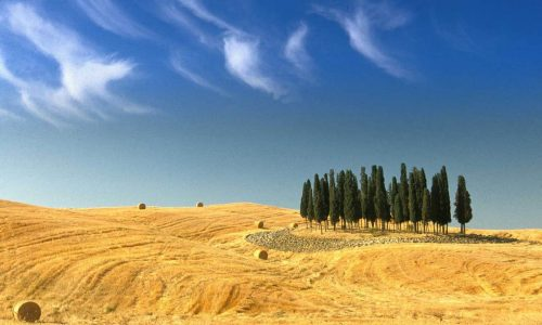 4 Things To Do On A Last Minute Tour Of Maremma