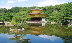 5 must do things in Japan